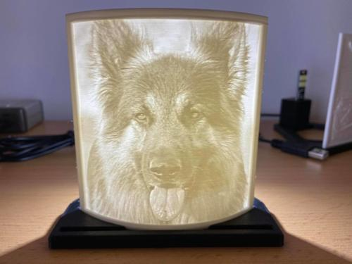 Lithos-Hund